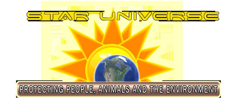 Star Universe Logo